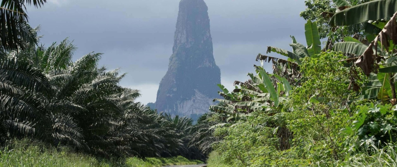 Le Parc Naturel de Ôbo à la végétation luxuriante recouvre 30% de l'île de Sao Tomé